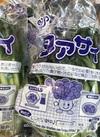 ターサイ 100円(税抜)