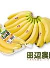 田辺農園のバナナ 240円(税抜)