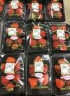 イチゴ(恋みのり) 398円(税抜)
