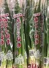 中ねぎ 98円(税抜)