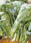 鹿野ほうれん草(特別栽培) 158円(税抜)