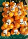 内田さんのネーブルオレンジ 498円(税抜)
