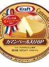 カマンベール入り6Pチーズ 10ポイントプレゼント