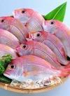レンコ鯛(調理済み) 158円(税抜)