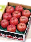 わけありサンふじりんご〈小箱〉 580円(税抜)