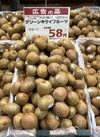 グリーンキウイフルーツ 58円(税抜)