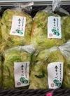 春キャベツ(刻み) 378円(税抜)