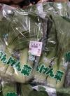 ちんげん菜 99円(税抜)