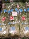 水菜 99円(税抜)