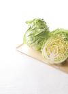 食卓応援セレクト 三浦の春きゃべつ 98円(税抜)