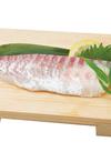 活〆鯛刺身用短冊(養殖) 498円(税抜)