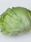 三ツ星野菜のレタス 105円