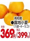 露地小夏 369円