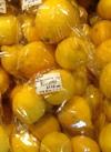 レモン 119円(税込)
