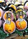 蒲郡樹熟デコポン 798円(税抜)