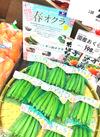 国産春おくら 148円(税抜)
