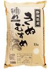 静岡県産 きぬむすめ 3,218円(税込)