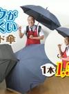 リュックが濡れにくい♪ スライド傘 1,650円(税込)