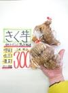 キクイモを試してみよう!50円引き‼️ 50円引