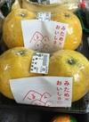河内晩柑 430円(税込)