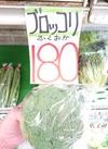 ブロッコリー10円引き❗ 10円引