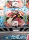 お刺身盛合せ【4点盛】 754円(税込)