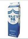 せんどう牛乳 171円(税込)