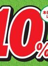 ヘアカラー全品 10%引