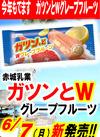 ガツンとWグレープフルーツ 106円(税込)
