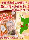 三真 ねじねじ 醤油味 192円(税込)