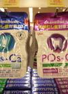 ポスカ クリアミント 各種 495円(税込)