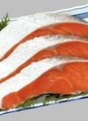 紅鮭切身(中辛) 171円(税込)