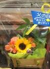 父の日用 お花セット 1,320円(税込)
