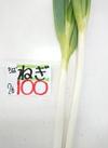 長ねぎ20円引き❗ 20円引