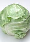 春キャベツ 99円(税抜)