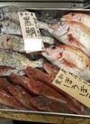 鮮魚 コーナー 10%引