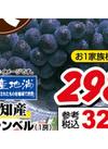 キャンベル 321円(税込)