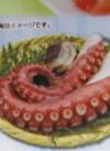 次世代たこ プレミアム 537円(税込)
