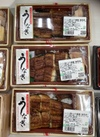 ふっくらと焼き上げた鰻重 1,706円(税込)