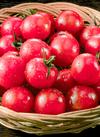 ミニトマト 210円(税込)