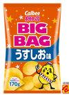 ビッグバッグ うすしお味 203円(税込)