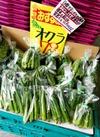 オクラ 84円(税込)