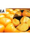 おけさ柿 秀品 約4kg箱 2Lサイズ 16玉入 2,980円(税込)