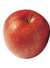 りんご(サンつがる) 105円(税込)