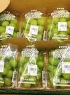 シャインマスカット 843円(税込)