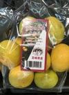 南国の陽蜜みかん 753円(税込)