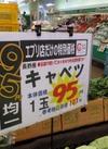 キャベツ 103円(税込)