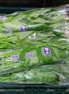 空芯菜(つつ菜) 95円(税込)