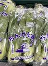チンゲン菜 84円(税込)