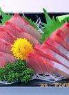 オリーブハマチ刺身(養殖) 518円(税込)